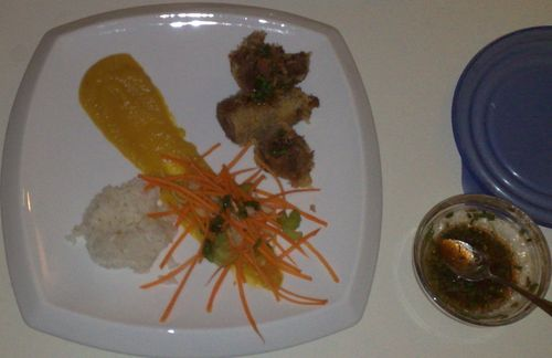 Goose roll, butternutsquash purée, carrot salad, sticky rice.
